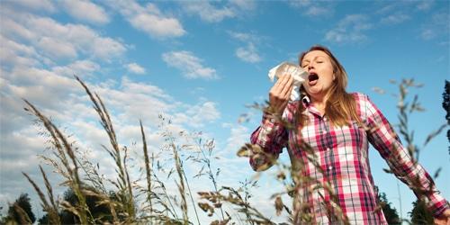 Friss tapasztalat az ALVEO vs allergia 1:0